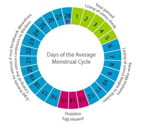 vroege zwangerschapstest